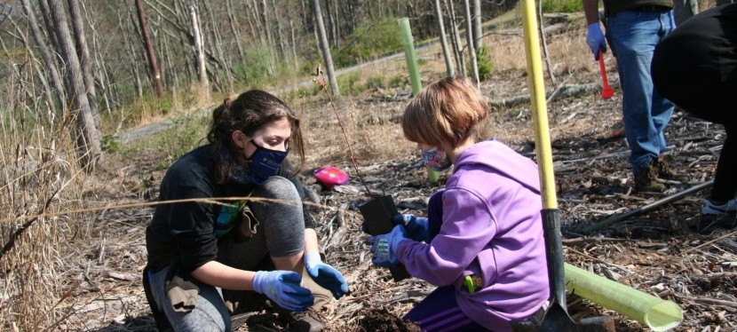Photos: Planting Trees for aPromise